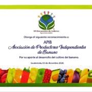 APIB: un líder en las agro exportaciones en Guatemala.